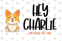 Hey charlie font